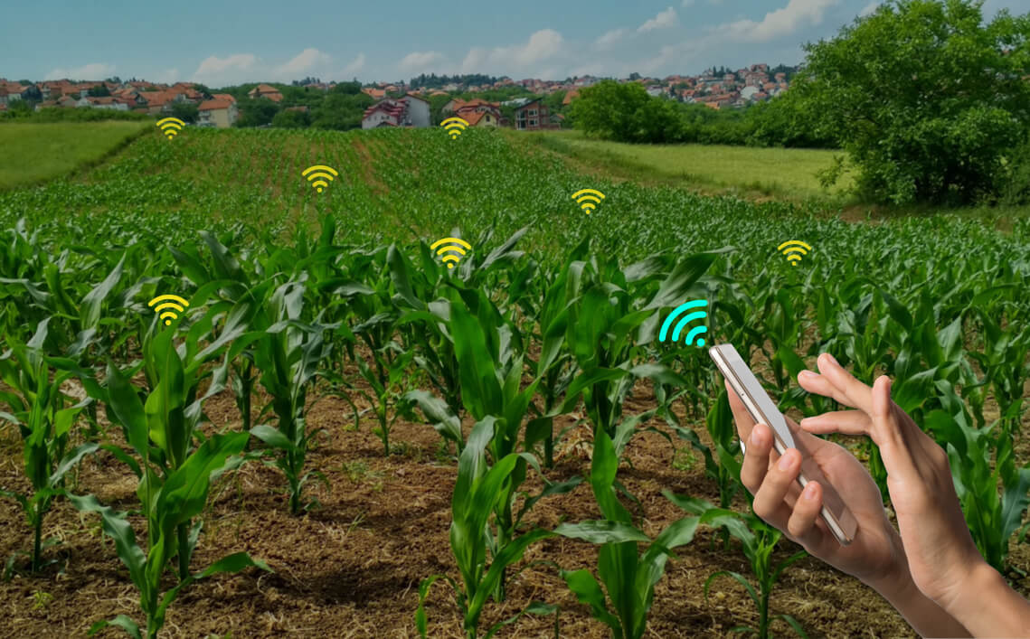 IoT solutions for farming by lets nurture